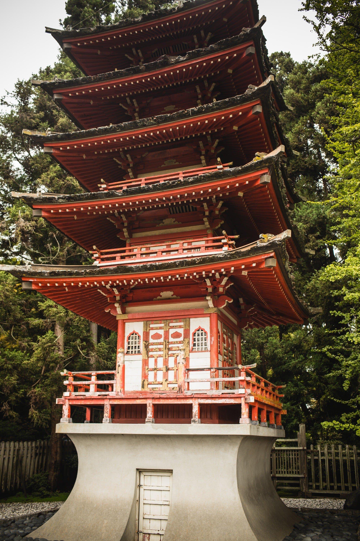 Tips For Visiting The San Francisco Japanese Tea Garden