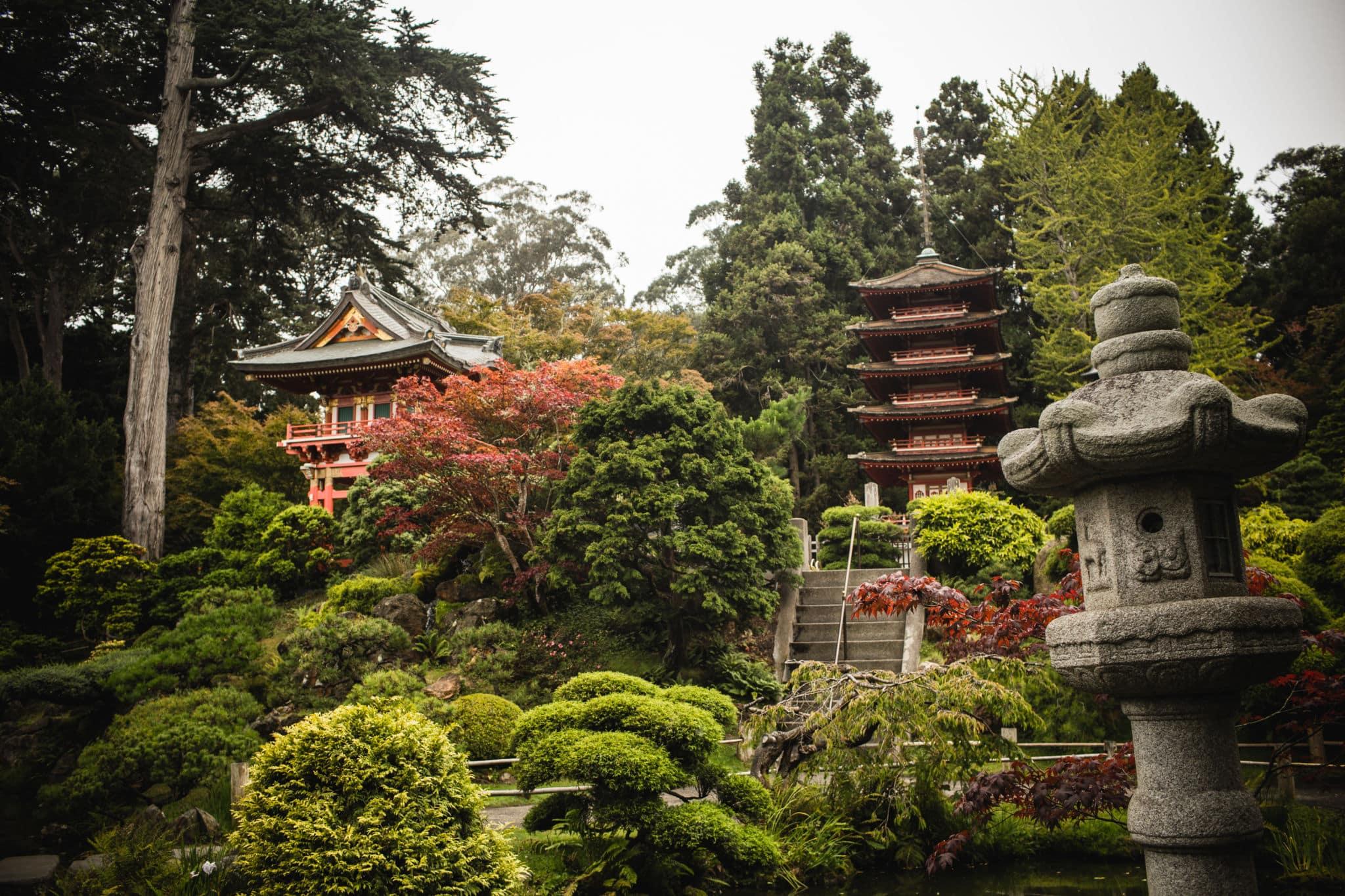 Tips for visiting the san francisco japanese tea garden - Japanese tea garden san francisco ...