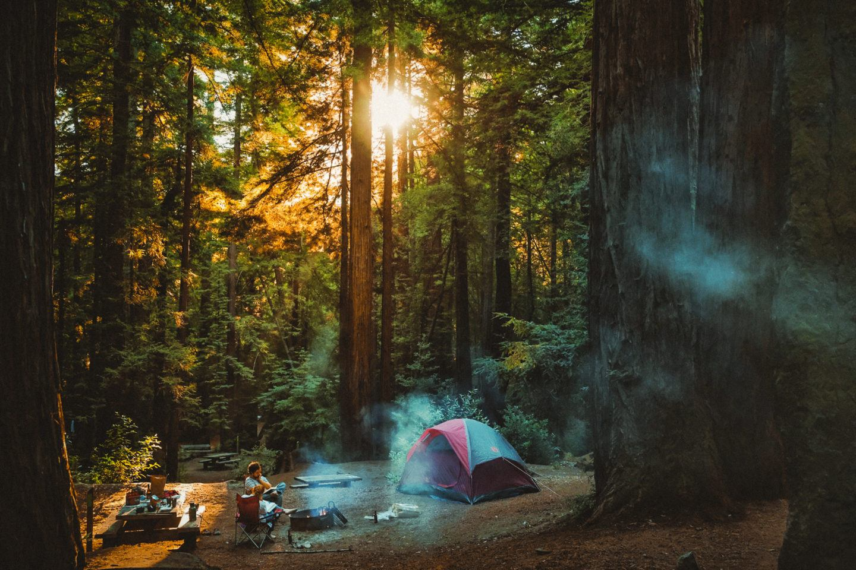 Inside The Ventana Campground at Big Sur