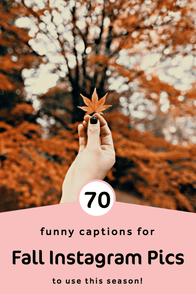 70 Fall Instagram Captions So Genius You Ll Want To Use Them All